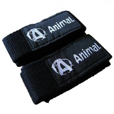 Animal Lifting Straps