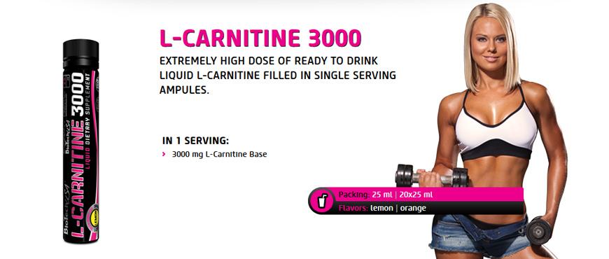L-Carnitine 3000g